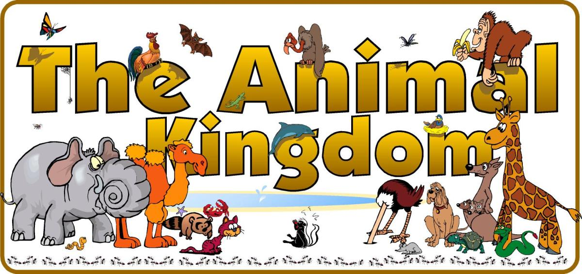 CHAPTER 4 – ANIMAL KINGDOM