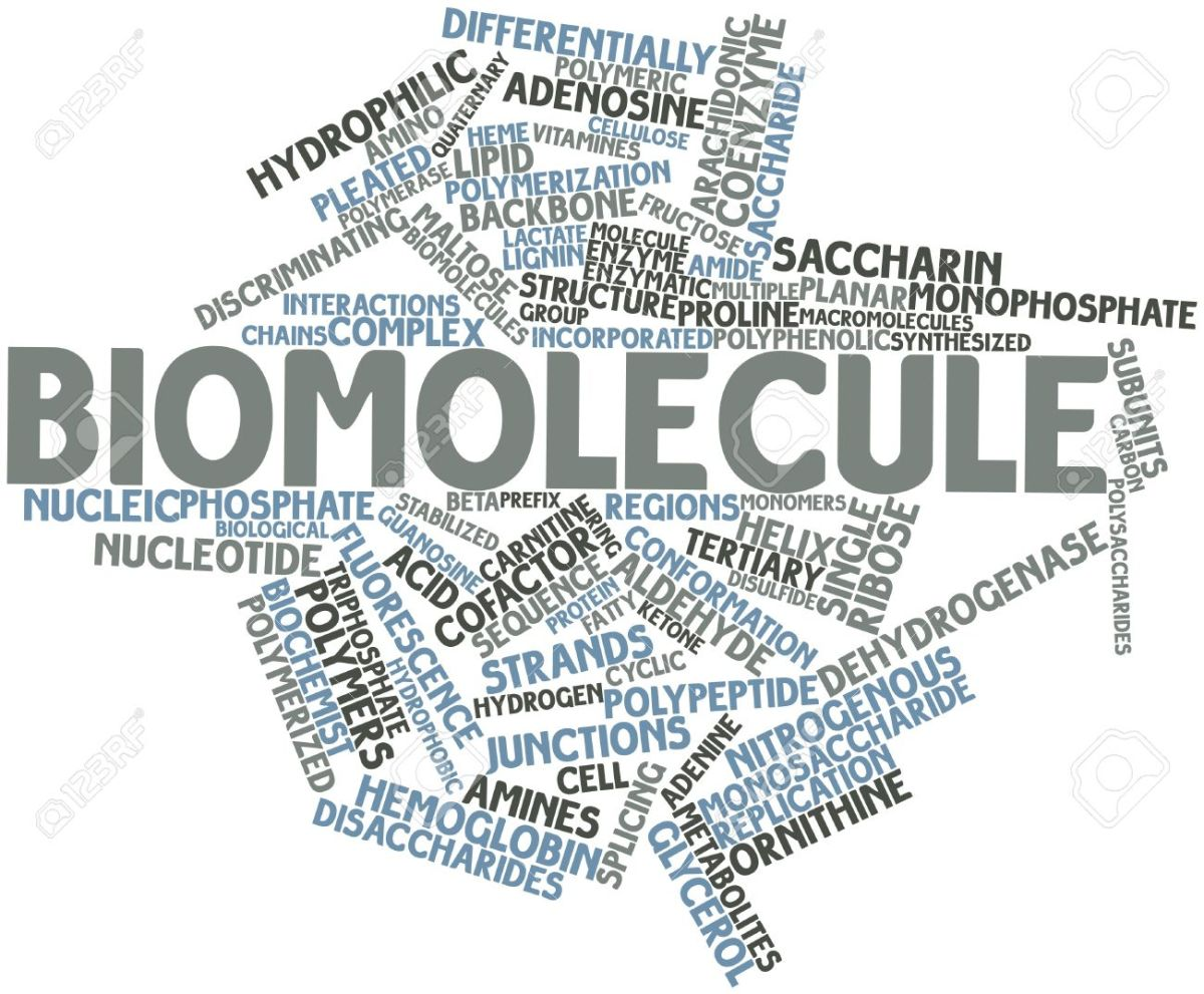 CHAPTER 9 – BIOMOLECULES